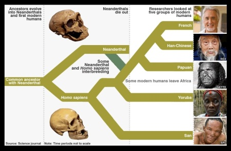Origin of human race - momogenous